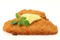 Schnitzel Royalty Free Stock Photo