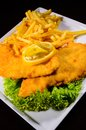 Schnitzel Royalty Free Stock Photography