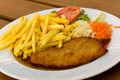 Schnitzel - cutlet with french fries and Salad Stock Images