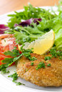Schnitzel and Salad Royalty Free Stock Image