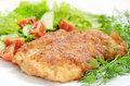 Schnitzel with vegetables chicken and herbs Royalty Free Stock Images