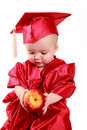 Scholar baby Stock Photography