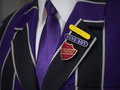 School boys blazer with school badges Royalty Free Stock Photo
