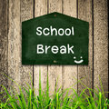 School brak message on blackboard with green grass wooden background Stock Photo
