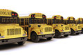 School buses with white top in a row Royalty Free Stock Photos