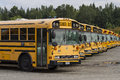 School Busses in Row Royalty Free Stock Photo