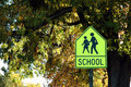 School Crossing Royalty Free Stock Images