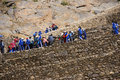 School kids in blue climbing agricultural terraces ollantaytambo peru aug to inca city ruins ollantaytambo peru south america Stock Photos