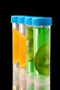 Science lb tubes filed with liquid of with fruits parts on black background Royalty Free Stock Images