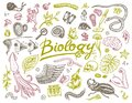 Scientific laboratory in Biology. Icon Set of Biochemistry Research. Living creatures organisms molecules. Medicine in