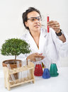 Scientist lab plant Royalty Free Stock Photo