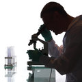 Scientist looking into a microscope in a laboratory Stock Images