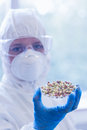 Scientist in protective suit with sprouts in laboratory close up of a the Stock Photos