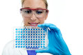 Scientist woman examining a microplate Stock Photos