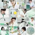 Scientists work in laboratory set of pictures of working the lab tinted image Stock Photography