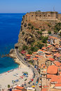Scilla Royalty Free Stock Photos