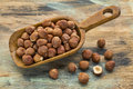 Scoop of hazelnuts on a rustic wooden against a wood grunge background Royalty Free Stock Images