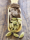 Scoopful of cardamom Stock Images