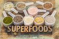 Scoops of superfoods Royalty Free Stock Image