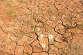 Scorched earth during drought Royalty Free Stock Photos