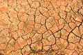 Scorched earth during drought Royalty Free Stock Photo