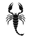 Scorpion isolated object on white background vector illustration eps Royalty Free Stock Photography