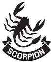 Scorpion label symbol vector Stock Images