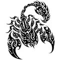 Scorpion tattoo vector on a isolated background abstract illustration of Stock Photo
