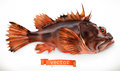 Scorpionfish. 3d vector icon. Seafood
