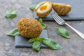 Scotch egg gourmet with running yolk on rustic wooden table Stock Photo