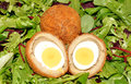 Scotch eggs one cut in half showing the boiled egg on a salad leaf background Stock Photos