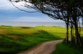 Scotland links style golf course hole on the channel at kingsbarns in st andrews Royalty Free Stock Image