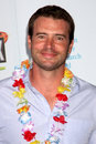 Scott Foley Royalty Free Stock Photos
