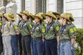 Scouts in line Royalty Free Stock Photo