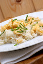 Scrambled eggs with rice on a plate Royalty Free Stock Photography