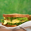 Scrambled eggs sandwich with fried onions and lettuce selective focus focus on the front of the Stock Photos