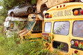 Scrapped school buses sit in auto junkyard several old vehicles piled on top of each other Stock Photo