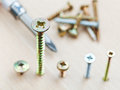 Screwdriver and different size screws wrapped in plank close up Stock Images