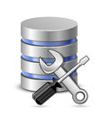 Screwdriver, spanner and database icon Royalty Free Stock Photography