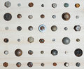 Screws heads metal in a wooden board Royalty Free Stock Image