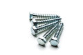 Screws isolated on the white background Royalty Free Stock Photo