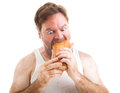 Scruffy man hungry humorous photo of a unshaven in his undershirt eating a big submarine hoagie sandwich isolated on white Royalty Free Stock Photography