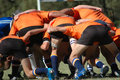Scrum do rugby Fotografia de Stock Royalty Free