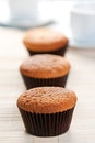 Scrumptious Fresh Muffins Royalty Free Stock Photo