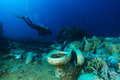 Scuba diver explore Yolanda reef Royalty Free Stock Photo