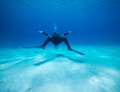Scuba diver in the red sea sharm el sheikh at one with their environment Stock Image