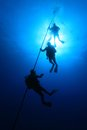 Scuba divers on decmpression stop in the blue water Royalty Free Stock Image