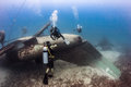 Scuba divers explore the wreck of an aircraft exploring upturned fuselage underwater Stock Image