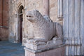 This sculpture of the lion in romanesque style guards the entrance to the cathedral of parma since century Stock Photo