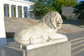 Sculpture of a lion in sevastopol town Royalty Free Stock Photos